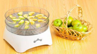 تصویر چند نمونه دستگاه میوه خشک کن ارزان و پرفروش+ قیمت روز و خرید اینترنتی