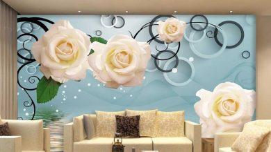 تصویر راهنمای خرید پوستر دیواری سه بعدی جدید و زیبا+ قیمت روز