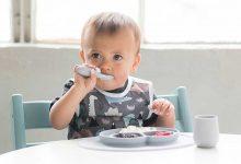 تصویر راهنمای خرید و معرفی ۲۵ نمونه ظرف غذاخوری کودک زیبا و جذاب+ قیمت روز